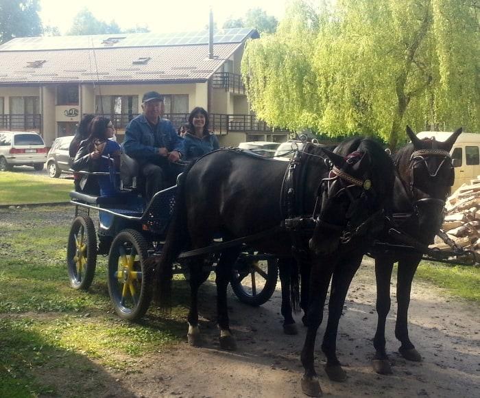 žirgai su karieta kaimo turizmo sodyboje